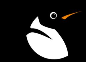 linux-300x215